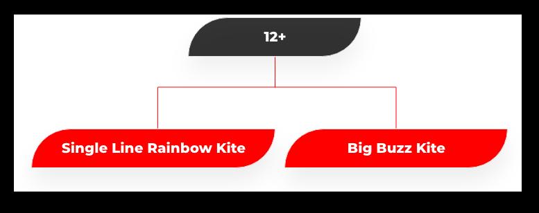 12 plus kites