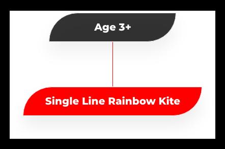age 3 plus kites