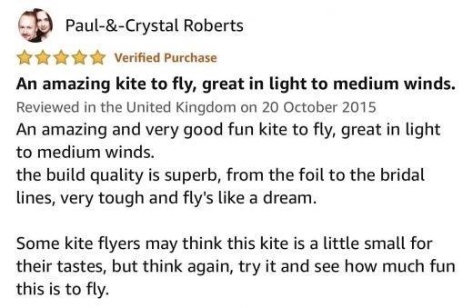 Flexifoil Big Buzz Kite Review