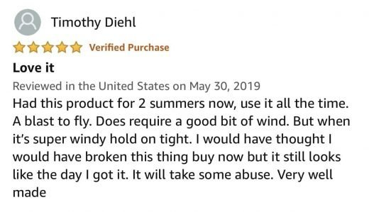 Big Buzz Kite Review