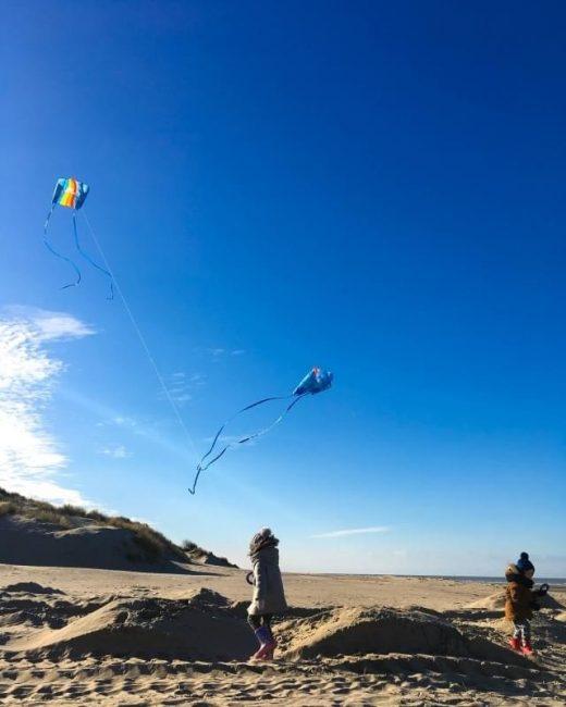 Single-Line Rainbow Family Kite