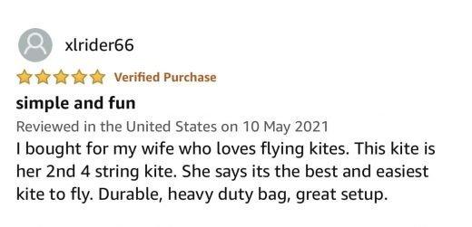 best stunt kites review