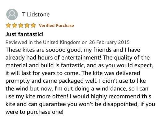 stunt kite review